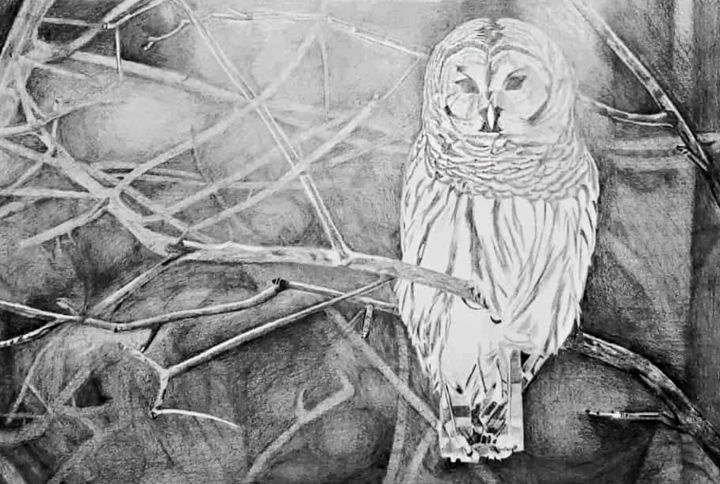 """Painting titled """"Owl painting"""" by Zieh Mazinani, Original Art, Pencil"""