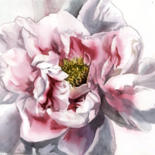 """Painting titled """"pink and white peony"""" by Alfred Ng, Original Art, Watercolor"""