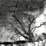 ©2002 by Philippe Berthier
