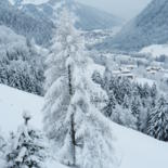 PHOTOGRAPHIES : COLLECTION PAYSAGES des NEIGES by Brigitte Mathé (MBL)