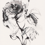 Rosas ex corde meo by Constance Robine