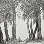 Dessins d'arbres/ Tree drawings by Isabelle Stagg