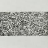 Dessins d écorces d'arbres, de stipes de palmiers et cep de vignes/ Drawings of tree bark by Isabelle Stagg