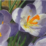 Watercolor series of Crocus by Linda Boisvert DeStefanis
