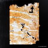 50x50 cm ©2012 by Anne-Marie Mary